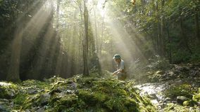 Abenteurer mitten in einer Waldreinigung stock video