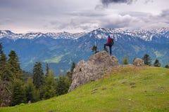 Abenteurer steht auf dem großen Stein auf Rand der Alpenwiese Stockbild