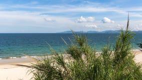 Aberdeen Shenzhen för rygg- horn strand Arkivfoton