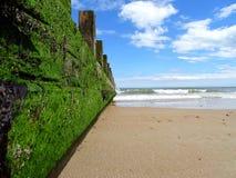 Aberdeen strand royaltyfri bild