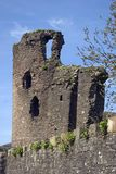 abergavenny замок Стоковая Фотография RF