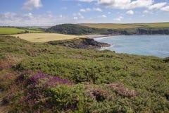 Abermawr, Pembrokeshire Royalty-vrije Stock Foto's