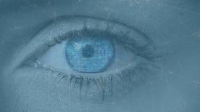 Abertura femenina del ojo almacen de video