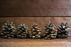 Abete-coni sui precedenti di legno natura morta del primo piano fotografia stock libera da diritti