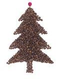 Abete dei chicchi di caffè Fotografia Stock