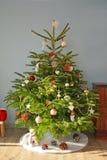 Abete di Natale Fotografia Stock