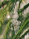 abete-ramoscelli Luminoso-accesi coperti di gocce di acqua fotografia stock