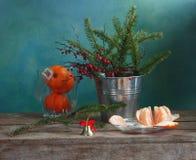 Abete-ramoscello e mandarini Fotografie Stock Libere da Diritti