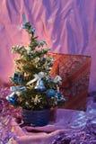 Abete rosso su un fondo differente alle cartoline ed alla congratulazione Fotografie Stock Libere da Diritti
