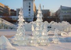 Abeti nella città del ghiaccio Immagine Stock Libera da Diritti