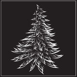 Abeto bonito do Natal Fotografia de Stock