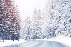 Abeto cobertos de neve bonitos nas montanhas alpinas fotografia de stock