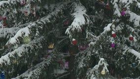 Abeto de la Navidad adornado almacen de metraje de vídeo
