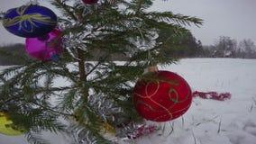 Abeto del árbol de la Navidad y del Año Nuevo en el campo y las nevadas nevosos, 4K almacen de video
