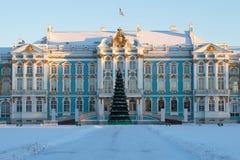 Abeto do Natal no fundo de Catherine Palace no inverno Selo de Tsarskoye, Rússia foto de stock