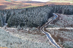 Abeto e estrada com coberta da neve fraca, Reino Unido Coun Fotografia de Stock