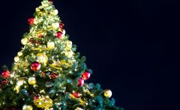 Abeto festivo brilhante c muitas bolas do ouro vermelho com de incandescência espaço festão da cópia de textos Imagens de Stock Royalty Free