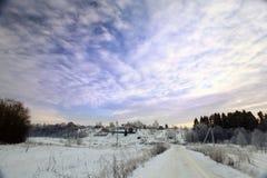 Abeto frío de la nieve del paisaje del bosque del invierno Fotos de archivo libres de regalías