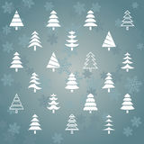 Abeto trees1 imagenes de archivo