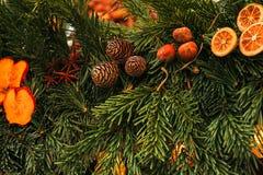 Abeto vermelho da decoração do Natal Foco seletivo Conceito do feriado fotos de stock