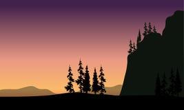 Abeto vermelho na silhueta dos montes Fotografia de Stock Royalty Free