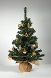 Abeto vermelho vestido pelo Natal e o ano novo Imagens de Stock