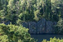 Abetos que crecen en una roca y que se acercan a un acantilado Inclinar-cambie de puesto el efecto fotos de archivo libres de regalías