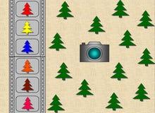 Abetos verdes - abetos del color stock de ilustración