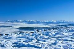 Abetos vermelhos cobertos de neve nas montanhas no inverno Imagem de Stock Royalty Free