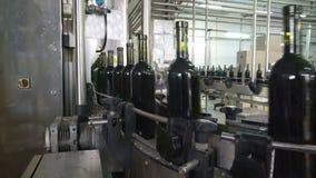 Abfüllende und versiegelnde Fördererlinie an der Weinkellerei stock footage