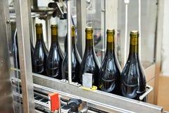 Abfüllender und versiegelnder Förderer zeichnen an der Weinfabrik Lizenzfreie Stockfotos