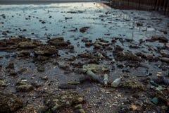 Abfall auf dem Strand bei Ebbe Lizenzfreie Stockfotos
