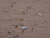 Abfall auf dem Strand im Hafen Stephens in Birubi-Punkt Stockbild