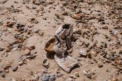 Abfall auf dem Strand Verlassener Schuh Abfall und Verschmutzung auf dem Strand Verschmutzung und Umwelt Lizenzfreie Stockbilder
