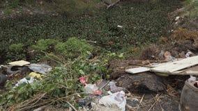Abfall auf dem Teich u. nahe einer Landschaftsstraße stock video
