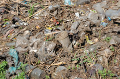 Abfall auf der Natur Stockbild