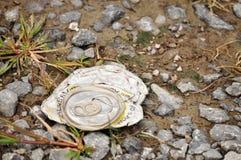 Abfall geworfen auf die Landschaft, die Schaden zur Umwelt verursacht lizenzfreies stockbild