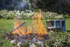 Abfall im Feuer, arbeiten illegaler Brandabfall im Garten Stockbilder