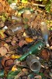 Abfall im Wald Stockfoto