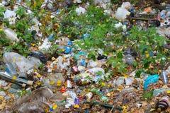 Abfall im Wald lizenzfreies stockbild
