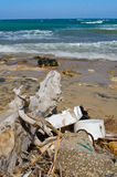 Abfall sammelt auf dem Strand an Lizenzfreie Stockfotografie