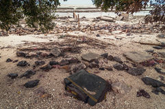 Abfall und Abfälle auf dem Strand Stockfotos