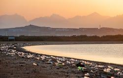 Abfallstrand der Großstadt Leeren Sie benutzte schmutzige Plastikflaschen Schmutziges Seesandige Küste des Roten Meers Ökologisch stockbild