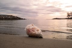 Abfalltaschen wurden auf dem Strand gelassen lizenzfreies stockfoto