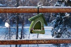 Abflussrinne für Vögel Lizenzfreies Stockbild