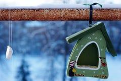 Abflussrinne für Vögel Stockbild