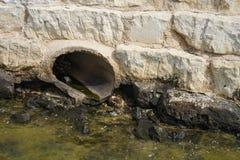 Abflussrohr im Meerwasser Stockbild