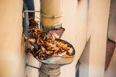 Abflussrohr verstopft mit Herbstlaub lizenzfreie stockfotos