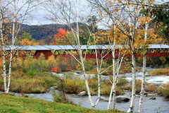 Abgedeckte Brücke im Herbst Stockfotografie