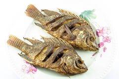 Abgefeuerte Fische Lizenzfreie Stockfotografie